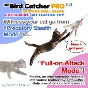 The Bird Catcher Pro EX Review