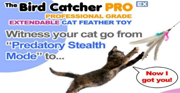 The Bird Catcher Pro EX review