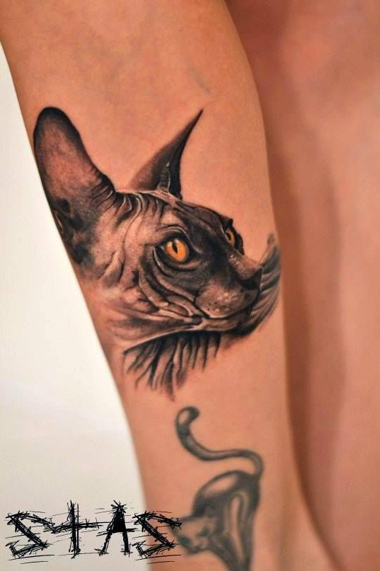 Realistic and amazing cat tattoo