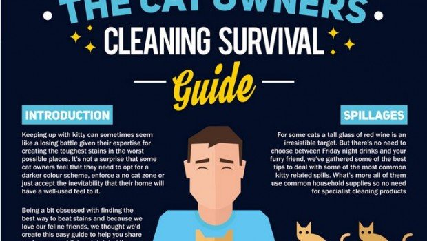 Featured Article: Cat Owners Survival Guide